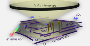 "Towards entry ""In situ microscopy – a key to unravel growth and functional properties of nanowires"""